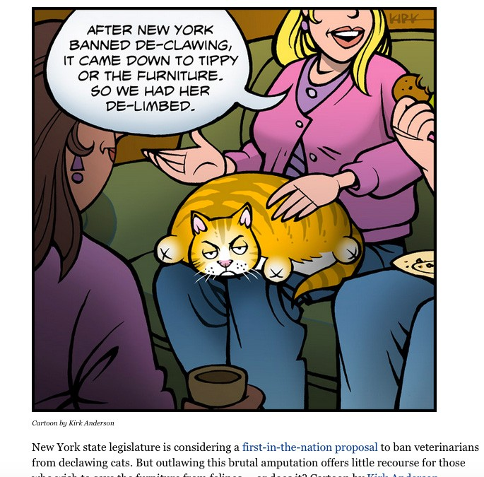 The Point of the Declawing Cartoon