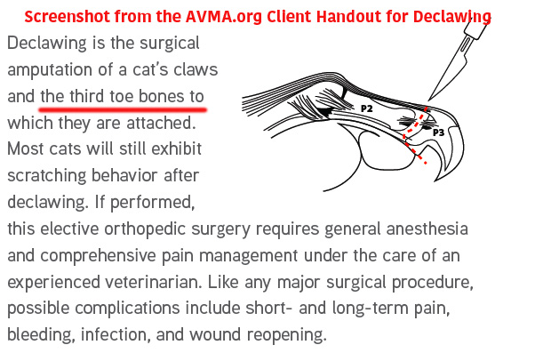 njvma spokesvet defends cat declawing with big fat lies ... 2001 arctic cat wiring diagram cat toe diagram