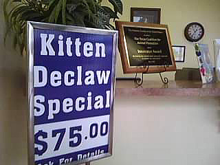 Texas Coalition for ANIMAL PROTECTION! Stop Declawing Cats!